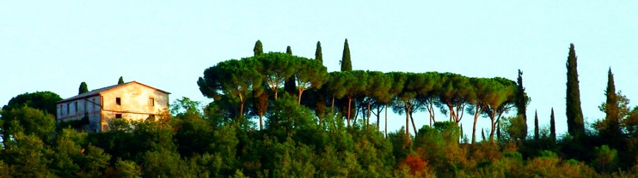 The hilltops of Tuscany on our gourmet Italian tours
